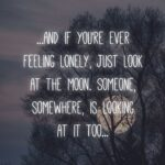 Awesome Sad Quotes Facebook