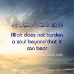 Beautiful Hadith Quotes Facebook