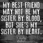 Best Friend Sister Quotes Twitter