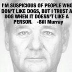Bill Murray Dog Quote Tumblr