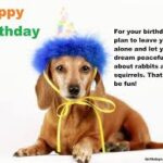 Birthday Quotes For Dog Lovers Tumblr