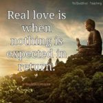 Buddha Quotes On Love And Marriage Facebook