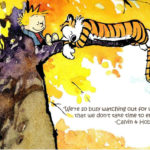 Calvin And Hobbes Quotes Funny Facebook