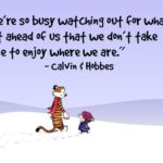 Calvin And Hobbes Sayings