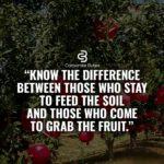 Captions About Fruit Pinterest