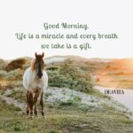 Cool Monday Morning Quotes Pinterest