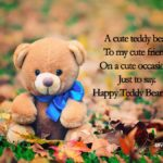 Cute Teddy Bear Status Pinterest