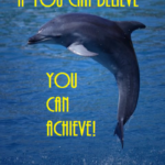 Dolphin Love Quotes Pinterest