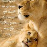 Famous Lioness Quotes Pinterest