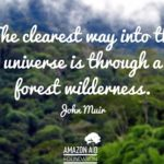 Famous Quotes On Forests