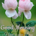 Friday Morning Wishes Images Twitter