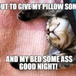 Funny Goodnight Sayings Twitter