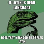 Funny Latin Sayings