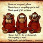 Funny Monkey Sayings
