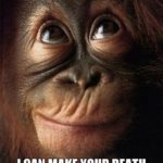 Funny Orangutan Quotes Facebook