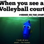 Funny Quotes About Volleyball Facebook