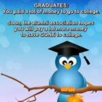 Funny University Graduation Quotes Twitter