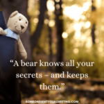 Giant Teddy Bear Quotes