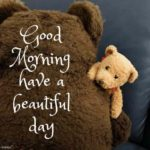 Good Morning Teddy Bear Quotes Pinterest
