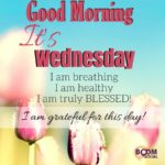 Good Morning Wednesday Quotes Facebook