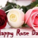 Happy Rose Day Twitter