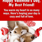 Happy Valentines Day Best Friend Quotes Twitter