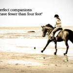 Horse Riding Captions Pinterest