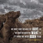 Hunting Dog Quotes And Sayings Twitter