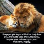 Lion And Lioness Quotes Images Pinterest