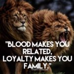 Lion Family Quotes