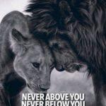 Lion Family Quotes Pinterest