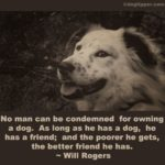Literary Quotes About Dogs Pinterest