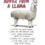 Llama Sayings Funny Twitter