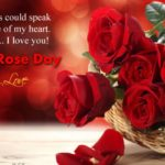 Love Rose Day Pic Twitter