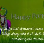 Mattu Pongal Wishes Pinterest