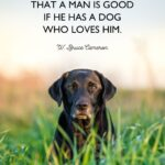 Meaningful Dog Quotes Facebook