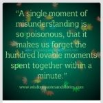 Misunderstanding Sad Quotes