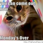 Monday Is Over Quotes