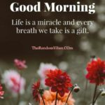 Morning Positive Thoughts Quotes Twitter