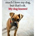 My Puppy Quotes Pinterest