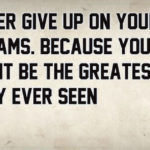 Never Give Up Baseball Quotes Facebook