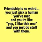 New Friends Quotes Funny