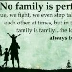 No Family Is Perfect Quotes