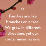 Our Growing Family Quotes Pinterest
