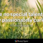 Passionately Curious Quote