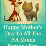 Pet Mothers Day Quotes Pinterest