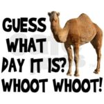 Pictures Of Hump Day Wednesday Facebook