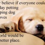 Puppy Sleeping Quotes Twitter