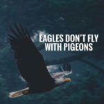 Quotes About Eagles And Success Facebook