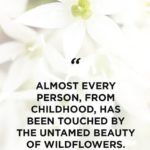 Quotes About Flowers And Beauty